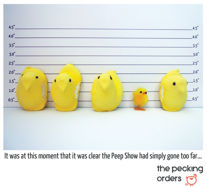 Things They Forgot to Mention, blog, photo, The Pecking Orders, pecking orders, Easter, peeps